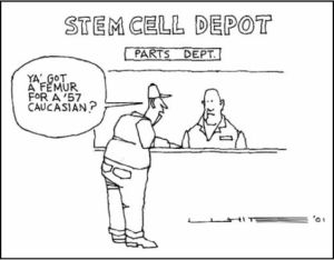 Cartoon Stem Cell Depot