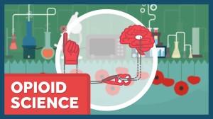 Opioid Science